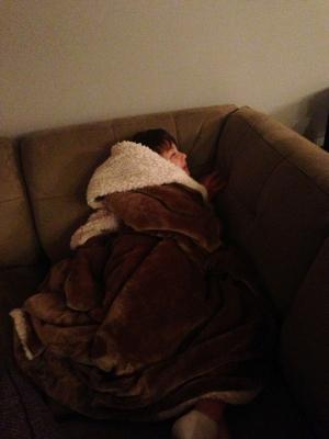 Jonah's example of an animal hibernating